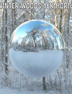 Winter Woods 16K HDRIs