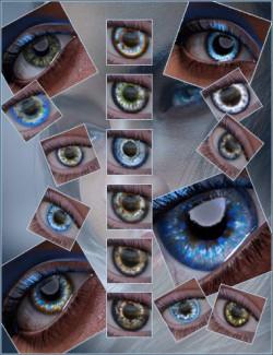 Geoshell Eye Builder for Victoria 8.1