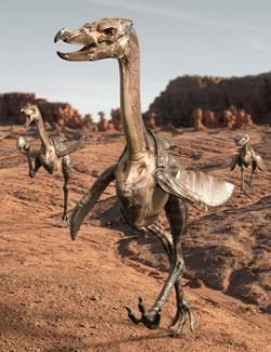 Raptor Bird for Daz Studio