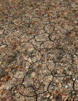 Panoramic Texture Resource: Parched Ground