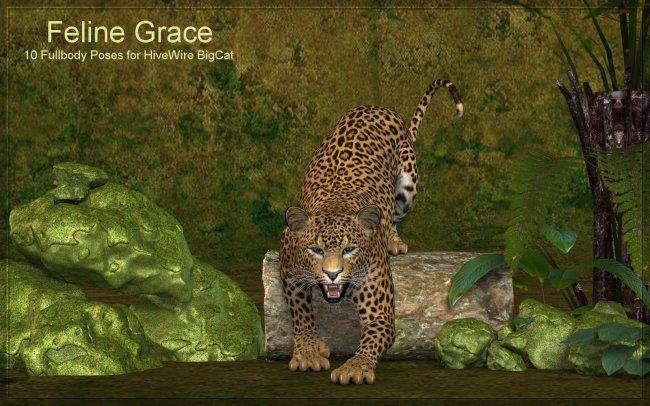 Feline Grace Poses for Hivewire Big Cat