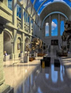 FG Museum
