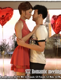 STZ Romantic meeting