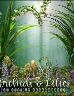 Orchids and Lilies Backgrounds