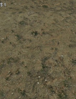 Panoramic Texture Resource: Mediterranean Dry Grass