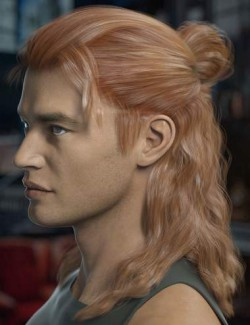 Briggs Hair for Genesis 8 Male and Females