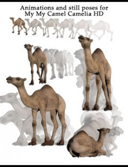Animations and still poses for My My Camel Camelia HD