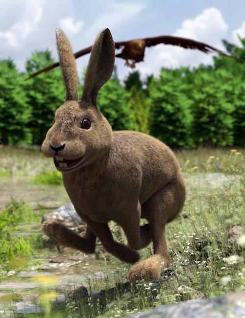 Caesar the Hare for Daz Dog 8