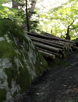 Modular 3D Kits: Nordic Lumberyard