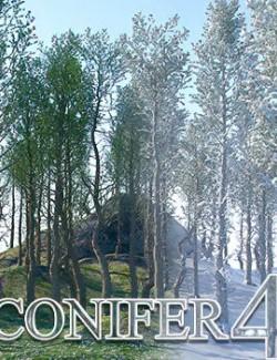 Flinks Conifer 4
