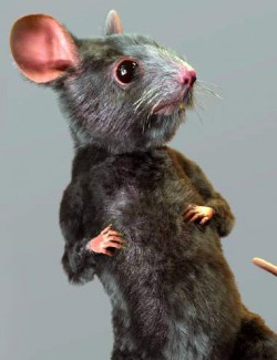 Storybook Mouse for Genesis 8.1 Males