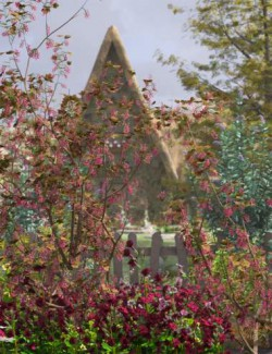 Spring Flowers - Flowering Currant Bushes