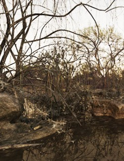 3D Scenery: Old Swamp
