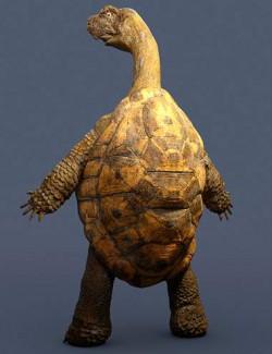 Storybook Turtle HD for Genesis 8.1 Males