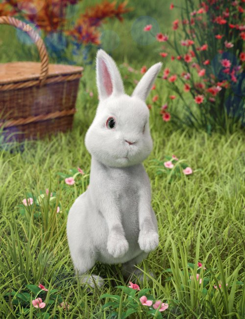 Pufflet The Bunny