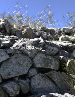 3D Cliff Construction Set: Overgrown Walls