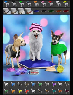 The Chihuahua Mega-Bundle for Daz Dog 8