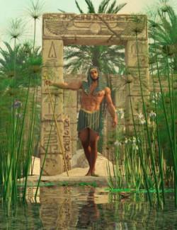 Nile Papyrus Plants