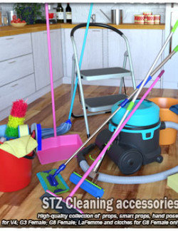 STZ Cleaning accessories