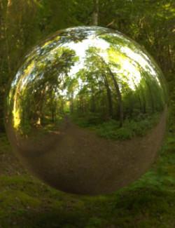 Forest Park 16K HDRIs