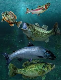 Freshwater Game Fish