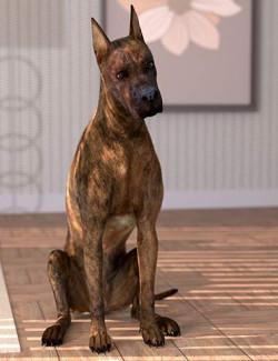 Oso Dog Fur for Daz Dog 8