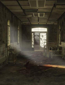 Abandoned Asylum