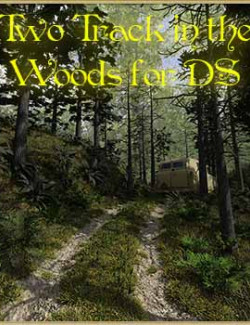 Two Track in the Woods for DS