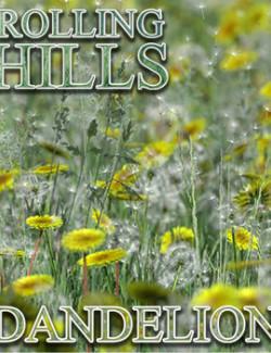 Flinks Rolling Hills - Flower 1 - Dandelion