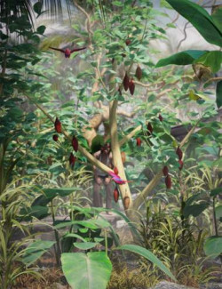 Tropical Plants- Edible Exotics