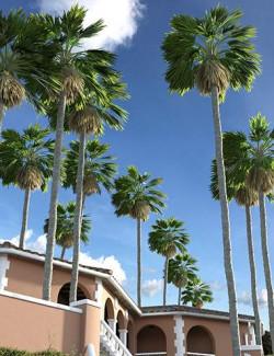 Predatron Washingtonia Fan Palm Trees