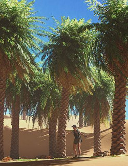Predatron Date Palm Trees