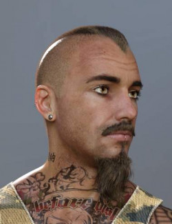 Petrov Hair, Beard, and Mustache for Genesis 8 and 8.1 Males