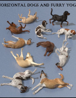 Horizontal Dogs and Furry Yoga
