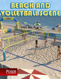 Beach Volleyball for Poser